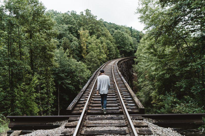Trabalhe a sua Plataforma de Autor